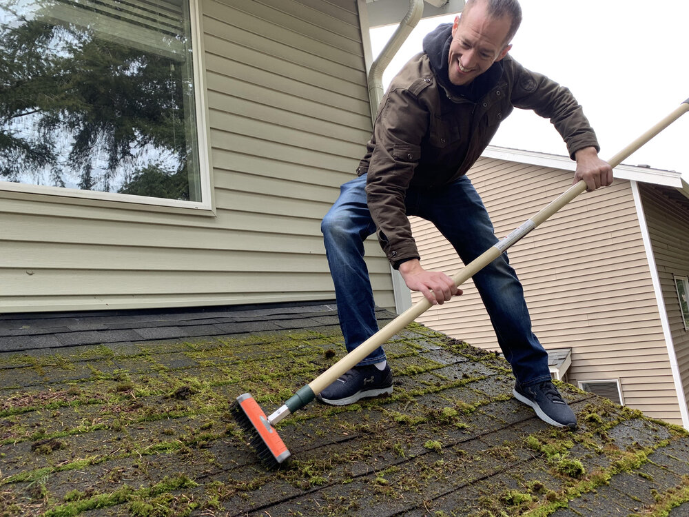 Roof Moss Removal Techniques